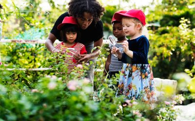 WHY NURTURE A LOVE FOR OUTDOOR PLAY